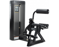 Freemotion Back Extension